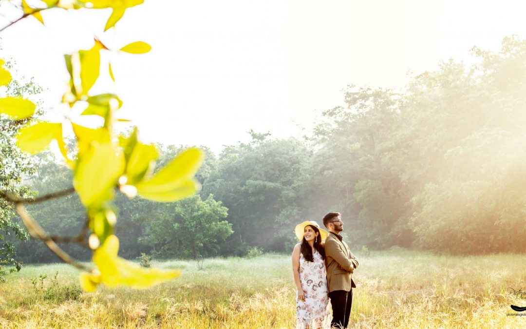 8 best locations for Pre-wedding shoots in India.